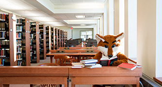 Image of college mascot in the library